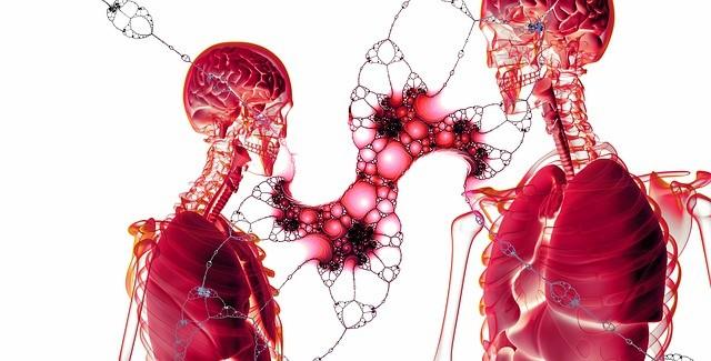 Фармакологические сенолитики - первые успехи на людях