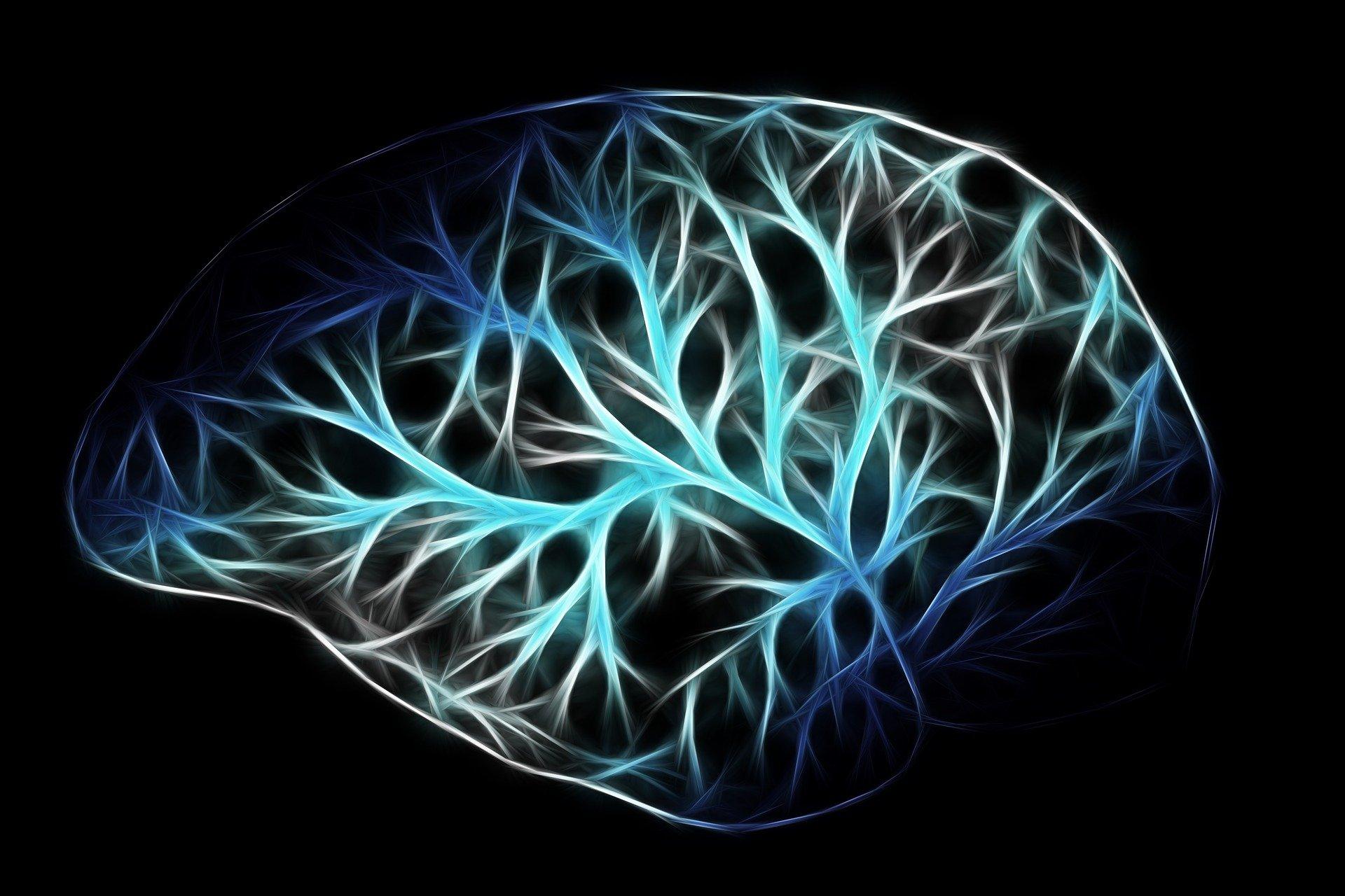 Ученые выяснили главную причину старения мозга.